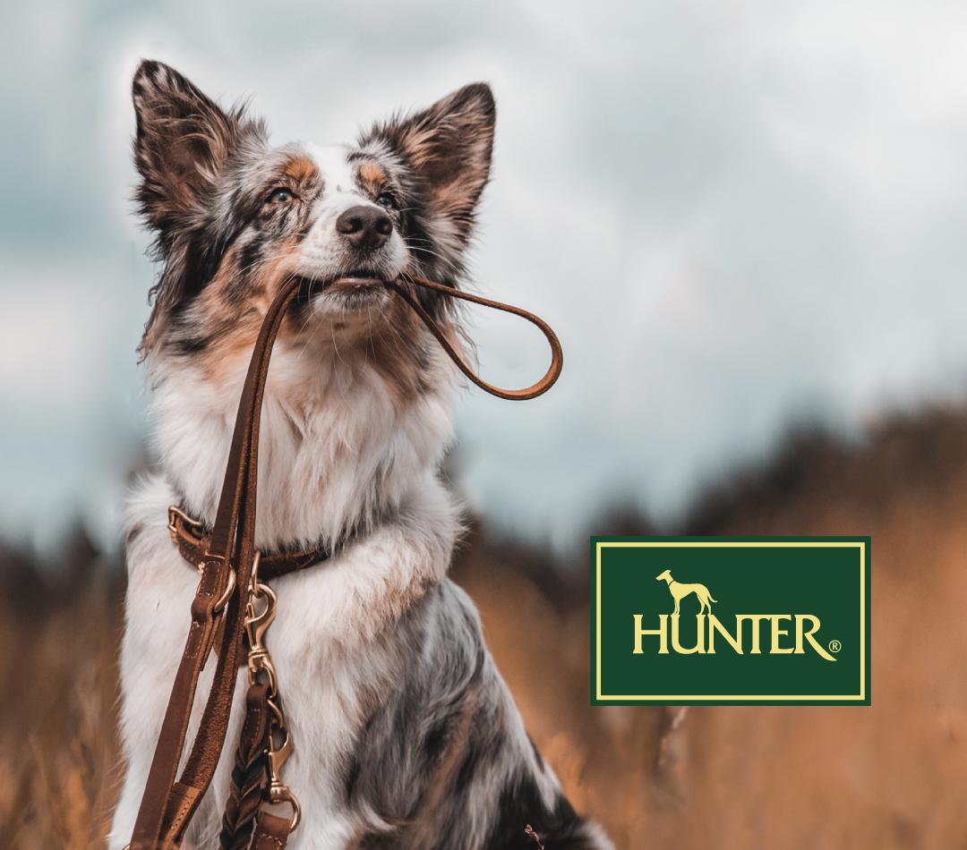 ハンター 欧州最大級 ペットブランド